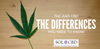 THC & CBD: The Differences You Need to Know