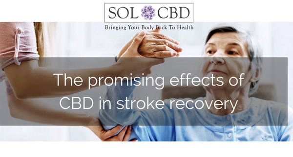 The Promising Effects of Cannabidiol in Stroke Recovery