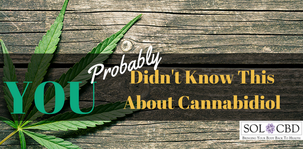 You Probably Didn't Know This About Cannabidiol