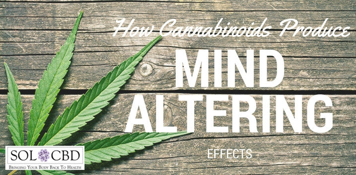 Discovered: How Cannabinoids Produce Mind-Altering Effects