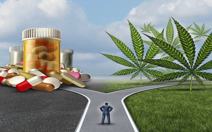 4 Out of 5 Cannabis Users Give Up Prescription Drugs