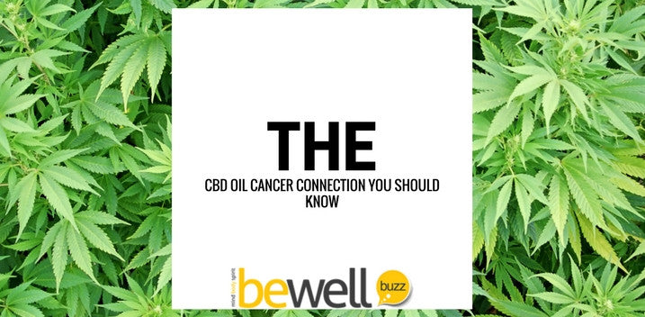 The CBD Oil Cancer Connection