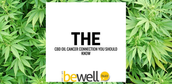 Experts Discover How CBD Kills Lung Cancer Cells