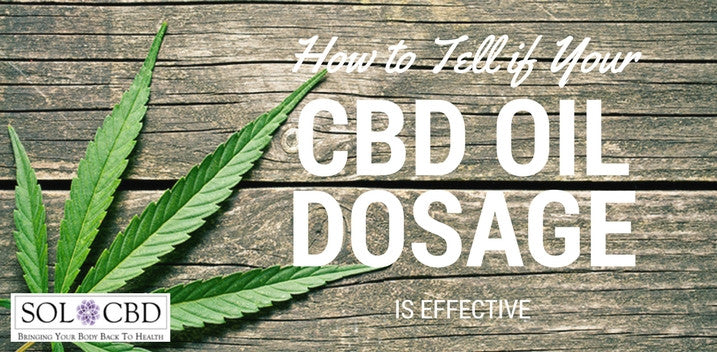 How to Tell If Your CBD Oil Dosage Is Effective