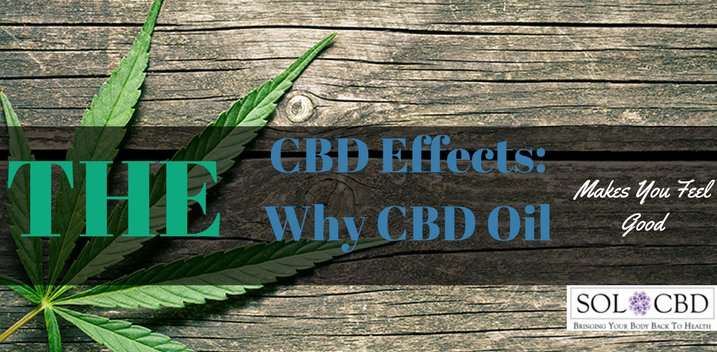 The CBD Effects: Why CBD Oil Makes You Feel Good