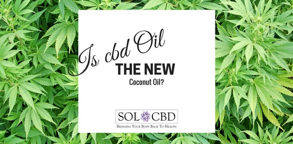 Is CBD Oil the New Coconut Oil?