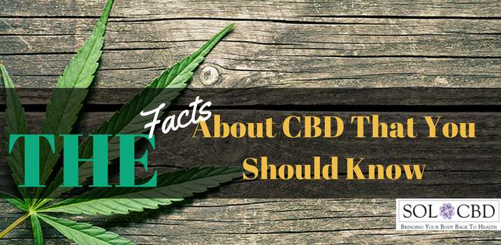 Most Important Studies on CBD