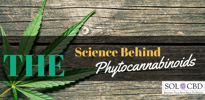 The Science Behind Phytocannabinoids
