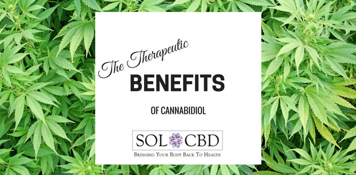 The Therapeutic Benefits of Cannabidiol