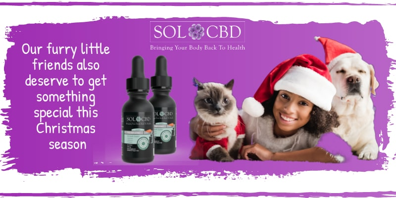 Our Liposomal CBD Oil for Dogs and Cats is the highest-quality CBD pet product on the market.