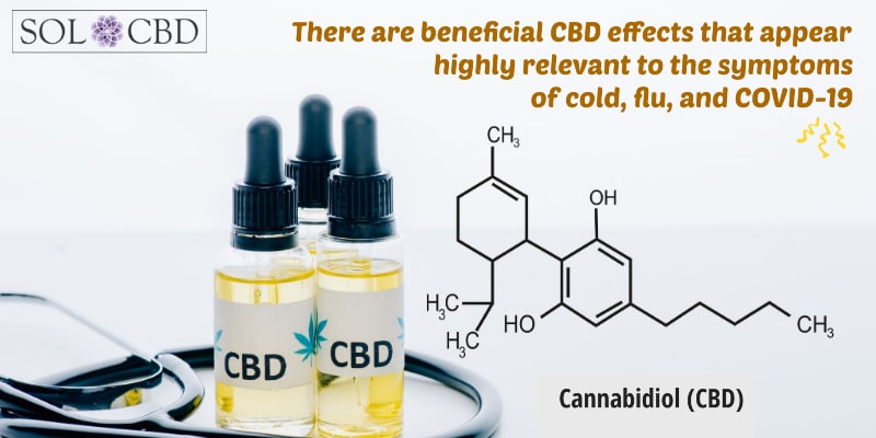 While CBD has plenty of benefits, preventing or fighting viruses do not currently fall on this list.