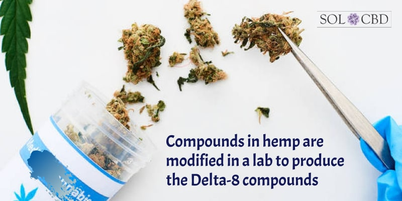 Compounds in hemp are modified in a lab to produce the Delta-8 compounds.
