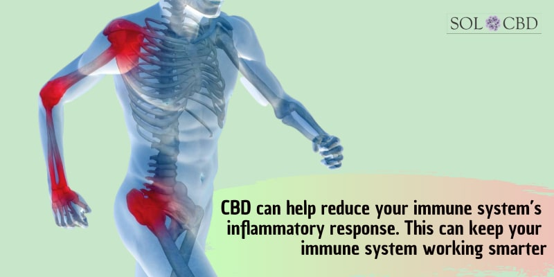 CBD can help reduce your immune system's inflammatory response.