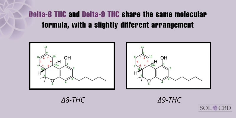 Delta-8 THC and Delta-9 THC share the same molecular formula, with a slightly different arrangement.