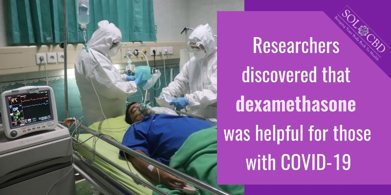 Researchers found that both CBD alone and CBD plus terpenes produced enhanced reductions of cytokines compared to dexamethasone.