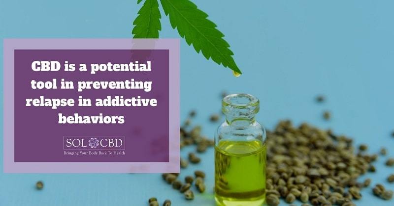 CBD is a potential tool in preventing relapse in addictive behaviors.