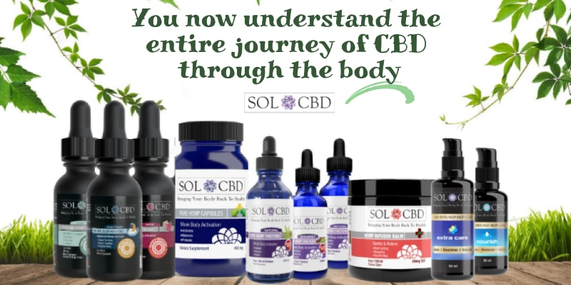 You now understand the entire journey of CBD through the body.