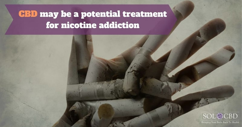 There is a strong pre-clinical rationale for using CBD as a potential treatment for nicotine addiction.