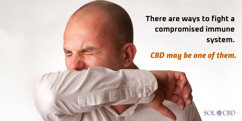 There are ways to fight a compromised immune system. CBD may be one of them.