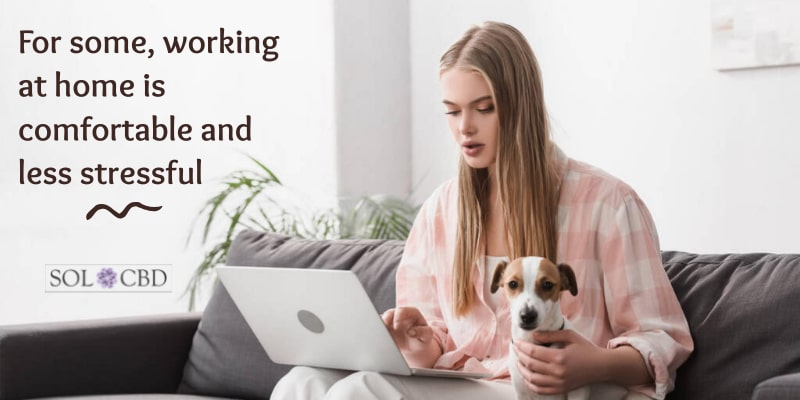 For some, working at home is comfortable and less stressful. And CBD makes it even better.