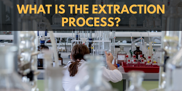 What is the CBD extraction process?