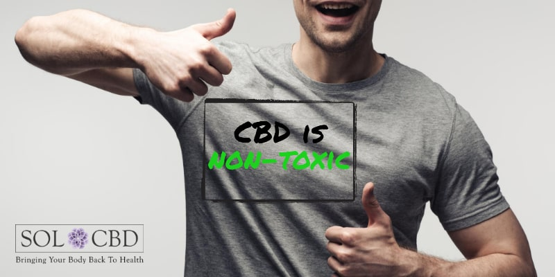 CBD is non-toxic for normal human cells and it does not impact physiological parameters.