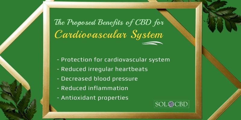 Proposed Benefits of CBD for the Cardiovascular System