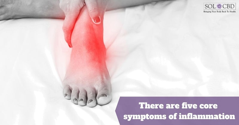 Redness and swelling are among the core symptoms of inflammation. Learn how to reduce inflammation.