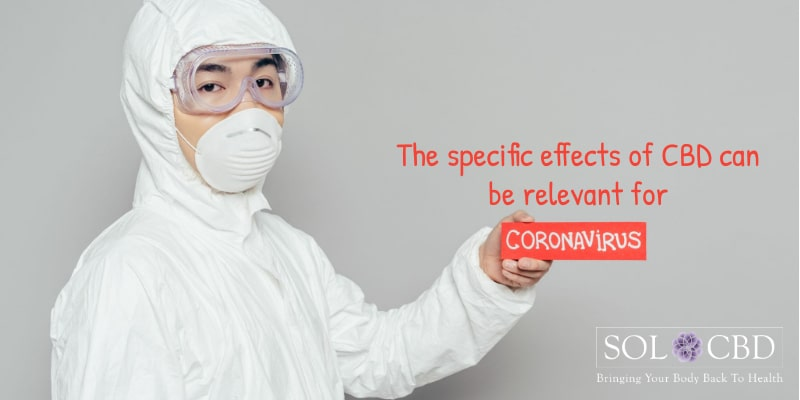 The specific effects of CBD can be relevant for coronavirus.