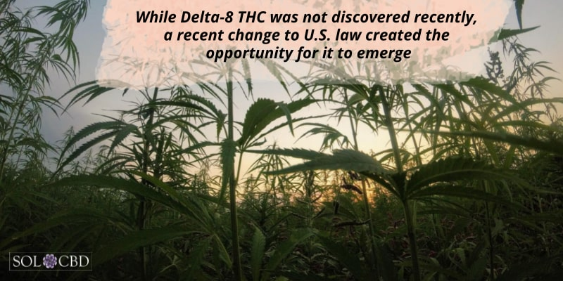While Delta-8 THC was not discovered recently, a recent change to U.S. law created the opportunity for it to emerge.