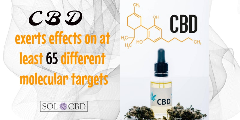CBD exerts effects on at least 65 different molecular targets.