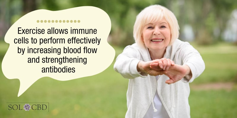 Exercise allows immune cells to perform effectively by increasing blood flow and strengthening antibodies.