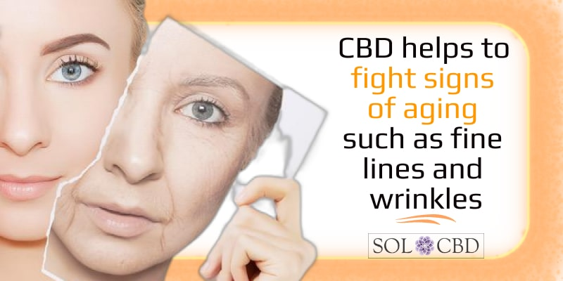 CBD helps to fight signs of aging such as fine lines and wrinkles.