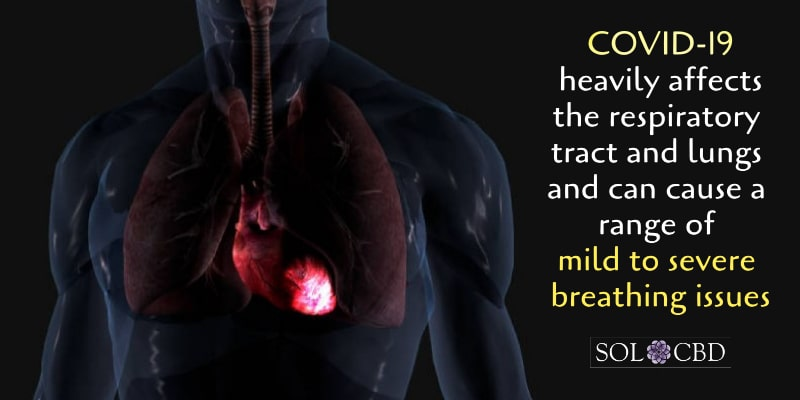 COVID-19 heavily affects the respiratory tract and lungs and can cause a range of mild to severe breathing issues.