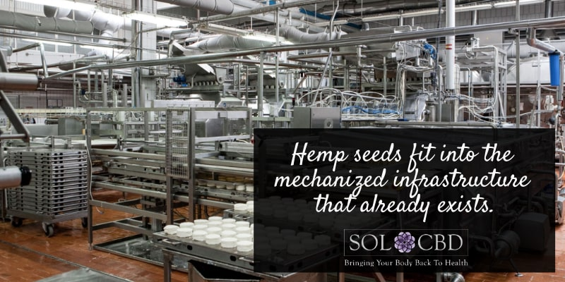 From the industry side of things, the benefits of this grain include the fact that hempseed fits into the mechanized infrastructure that already exists.