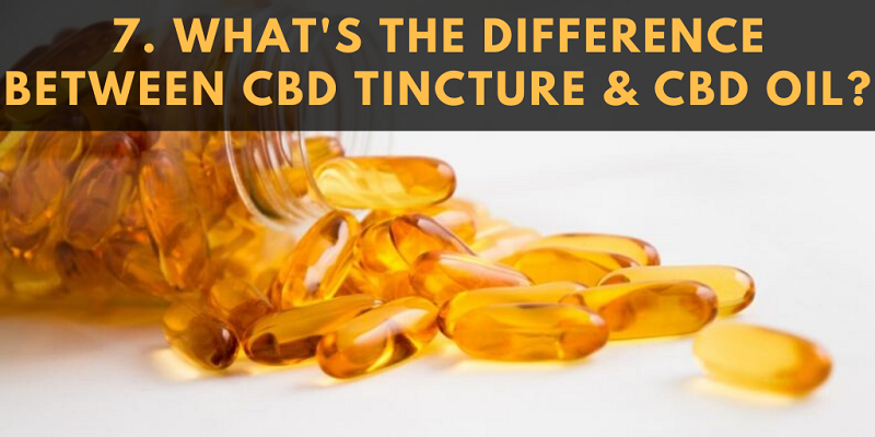 What's the Difference between a CBD Tincture and a CBD Oil?