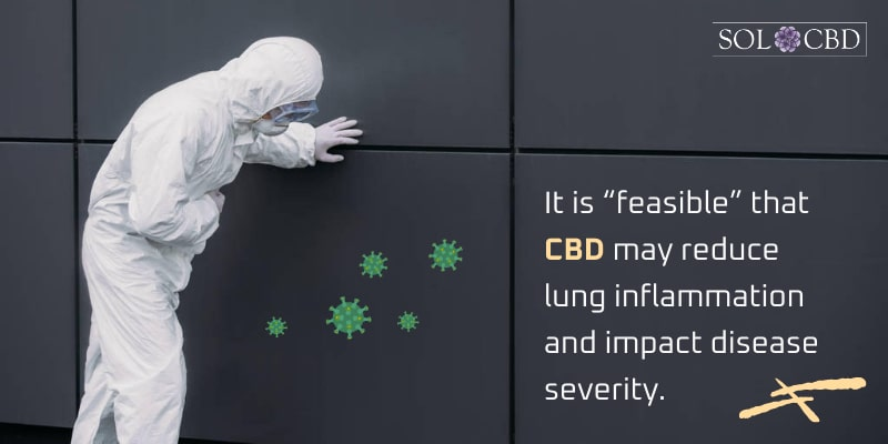"""It is """"feasible"""" that CBD may reduce lung inflammation and impact disease severity."""