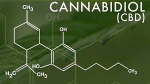 CBD Oil Effects: What is CBD Oil?