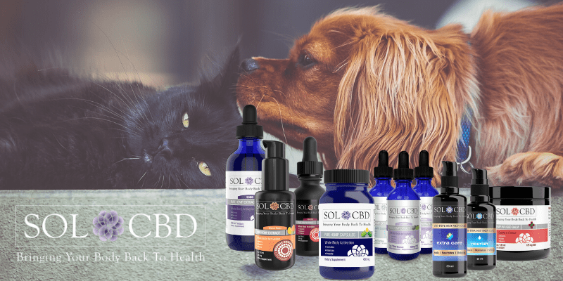 As a pet owner, it is legal to administer CBD to your pet as long as it is legal to buy for yourself.
