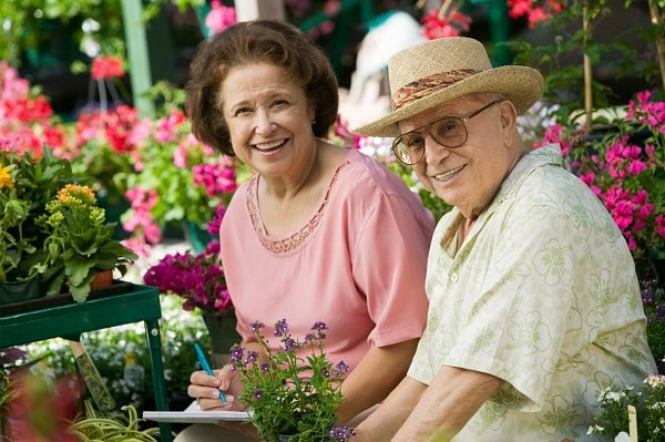 Past studies have shown that cannabis can provide palliative relief to Alzheimer's patients.