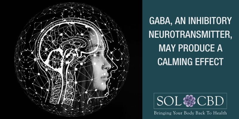 GABA, an inhibitory neurotransmitter, may produce a calming effect in people, as it counters the neurotransmitters responsible for excitement.
