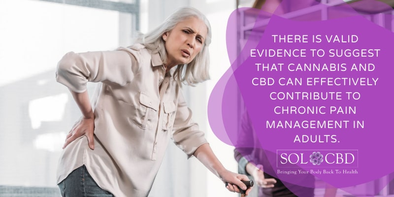 There is valid evidence to suggest that cannabis and CBD can effectively contribute to chronic pain management in adults.