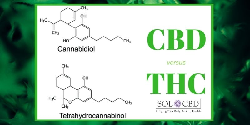 Although THC and CBD have identical molecular structures, a slight difference in the way these atoms are arranged, accounts for the difference in their legality and the effects that they have on your brain and body.