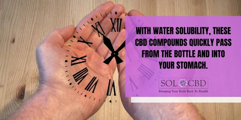 With water solubility, these CBD compounds quickly pass from the bottle and into your stomach.