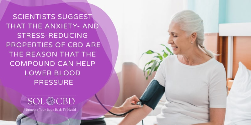 Scientists suggest that the anxiety- and stress-reducing properties of CBD are the reason that the compound can help lower blood pressure.