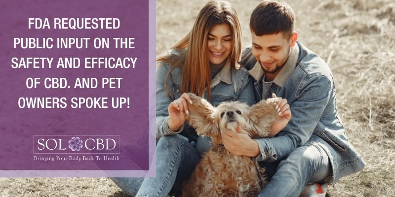 After the FDA requested public input regarding the safety and efficacy of CBD, pet owners spoke up.