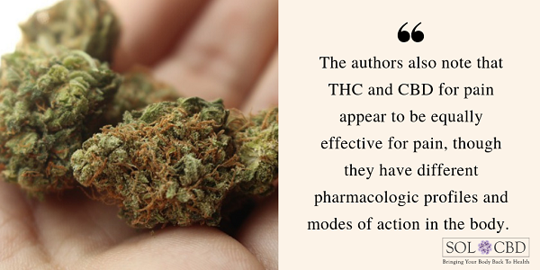 CBD vs. THC for Pain: Which Cannabinoid Is Better?