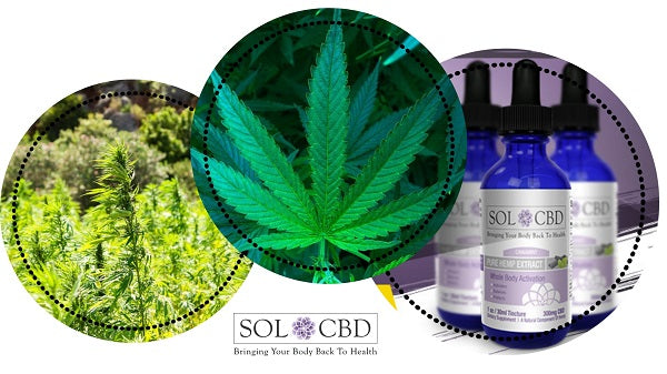 Research suggests that CBD works better when grouped with the other phytonutrients in hemp.