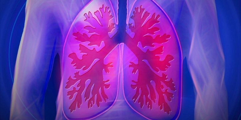 Studies show CBD demonstrates a utility to treat airway disorders.