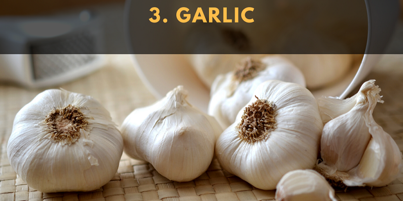 A review of the literature looked at the effect of garlic on blood pressure, cholesterol, and immunity.